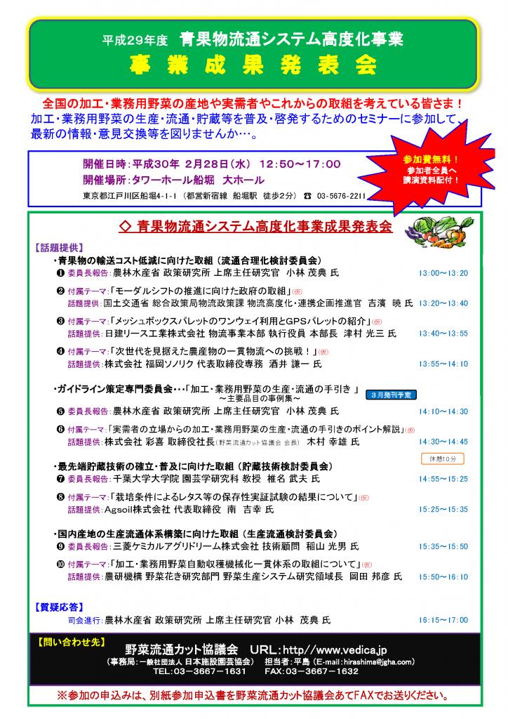 事業報告会チラシ(30年2月)