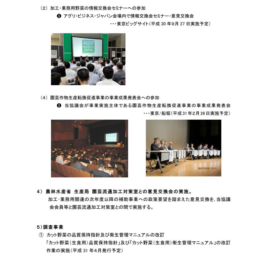 平成30年度活動計画3
